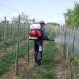 použití rosiče ve vinohradu